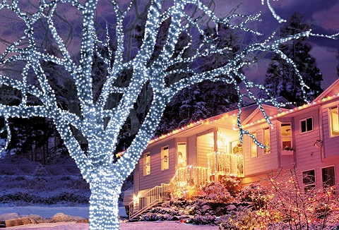 Link to the Christmas Trees and Lights website