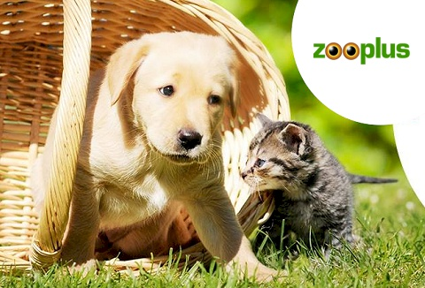 Link to the Zooplus website