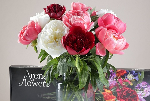 Link to the Arena Flowers website