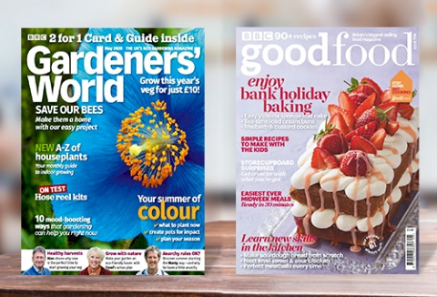 Link to the Immediate & BBC Magazines website